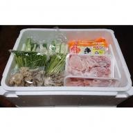 比内地鶏 きりたんぽ鍋セット 5~6人用(だまこもち付)【アマノストア】