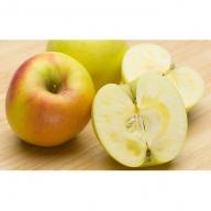 りんご群馬名月 10kg