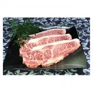 福井県のブランド牛 若狭牛 サーロインステーキ用 200g×3枚