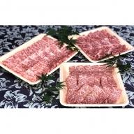 福井県のブランド牛 若狭牛 焼肉セット 【 牛ロース 牛モモ 牛バラ 】