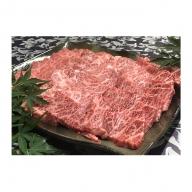 福井県のブランド牛 若狭牛 特上カルビ 焼肉用 700g