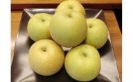 しろいの梨 幸水 5kg