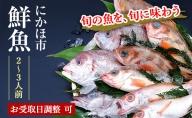 開けたらすぐ食べられる日本海の鮮魚詰合せ(2~3人前)(魚介 下処理済み 詰め合わせ セット)