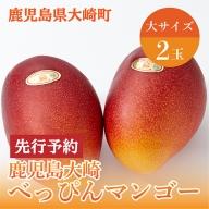 「鹿児島大崎べっぴんマンゴー」大2玉【先行予約】