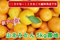 ★山北みかん5kg(家庭用・露地)A-294