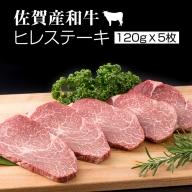 E60-025 佐賀産和牛ヒレステーキ120g×5 潮風F