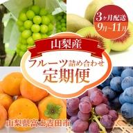 【3ヶ月お届け!】山梨産フルーツ詰め合わせ定期便(9~11月)
