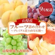 【9月配送】山梨産フルーツ詰め合わせ~プレミアム富士山宝石箱~