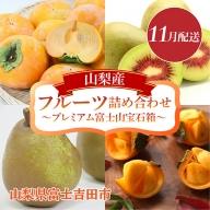 【11月配送】山梨産フルーツ詰め合わせ~プレミアム富士山宝石箱~