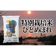 秋田県産ひとめぼれ減農薬米10kg(5kg×2・数量限定)