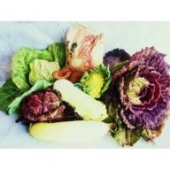 21C10-01 よしのがり野菜セットラージ+脊振石清水米10キロ(お米10キロと季節の野菜をお送りします)