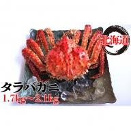 北海道太平洋岸前浜産タラバガニ(姿)1.7kg~2.1kg