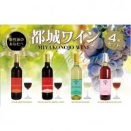 AC-2003_天孫降臨神話・水の神 ワイン4本セット