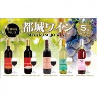 AD-2003_天孫降臨神話・友の神 ワイン5本セット