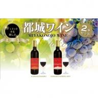 AA-2003_天孫降臨神話・海の神 ワイン2本セット