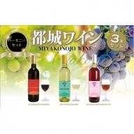 MJ-2008_天孫降臨神話・星の神 ワイン3本セット