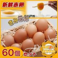AA-2911_新鮮赤卵「きみ恋卵」60個