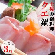 SZ033高知の真九絵(クエ)3kg(鍋用セット)