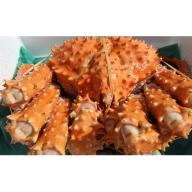 北海道オホーツク産 幻の蟹 イバラガニボイル 1.0~1.2kg
