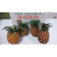 50箱限定★西表島ふる~つらんど★小玉パイナップル食べ比べセット