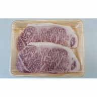 A5等級飛騨牛サーロインステーキ用500g(1枚約250g×2枚)