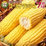 宮崎県産<南国育ち ゴールドラッシュ20本入>約7kg【B414】