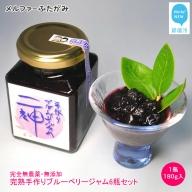 完全無農薬・無添加「完熟手作りブルーベリージャム」(180g入)6瓶セット メルファふたがみ