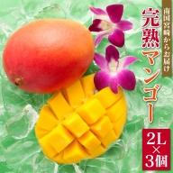 「南国宮崎からお届け」完熟マンゴー中玉2Lサイズ3個【C246】