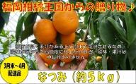 A542.【予約受付・期間限定商品】福岡柑橘王国・なつみ(2022年3月末~4月初旬配送)