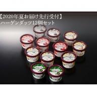 【夏にお届け!】ハーゲンダッツ・アイスクリームセット12個