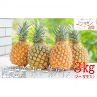 ☆『ちぎる派!?切る派!?』☆スナックパイン約3kg(3~5個入)