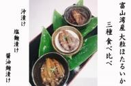 富山湾産大粒ほたるいか三味セット(沖漬・塩麹漬・醤油麹漬)