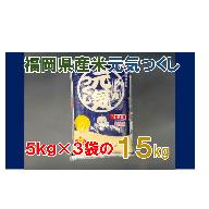 BE018.《福岡県産米》元気つくし15kg(5kg×3)