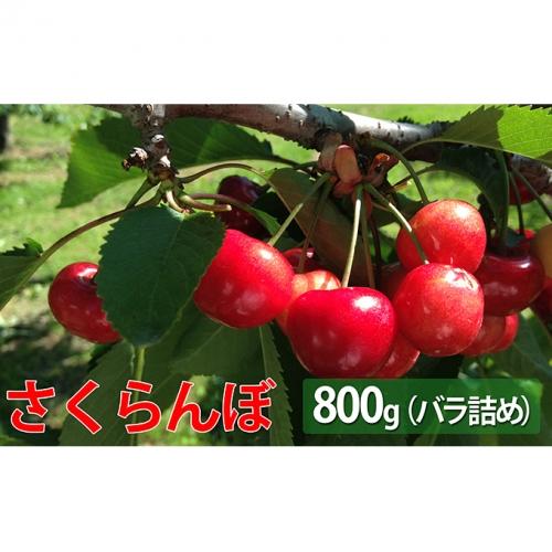 峠のふもと紅果園の大玉さくらんぼバラ詰め800g<2020年出荷>
