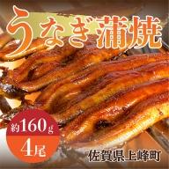 うなぎ蒲焼 (約160g×4尾) B-583