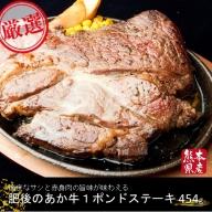 【熊本県産】GI認証取得 肥後のあか牛 1ポンドステーキ(454g)