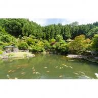 回遊式日本庭園「石照庭園」お食事付きペアチケット G