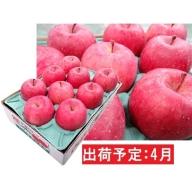 4月 冷た~い最高級ふじりんご約3kg・特選クラス(有袋栽培)