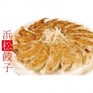 ちくや浜松餃子たっぷりセット(無添加ぎょうざ100個)