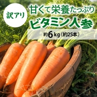 【訳アリ】甘くて栄養たっぷり ビタミン人参 6kg H095-004