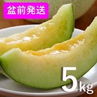8月 盆前 津軽産 青肉メロン ご家庭用 約5kg 3~6玉【青森メロン】