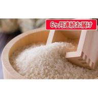 【6ヶ月定期便】荒島岳の麓で作られた名水無洗米コシヒカリ 5kg(こしひかり)