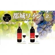 【母の日ギフト専用】AA-2003_天孫降臨神話・海の神 ワイン2本セット