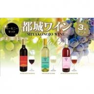 【母の日ギフト専用】MJ-2008_天孫降臨神話・星の神 ワイン3本セット