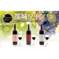 【母の日ギフト専用】MK-2007_天孫降臨神話・山の神 ワイン3本セット