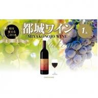 【母の日ギフト専用】MO-2001_天孫降臨神話・太陽の神 ワイン1本
