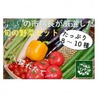 飛騨市で穫れたおすすめ旬の野菜セット[B0106]