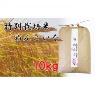 【米どころ秋田の特別栽培米 炭譲米めんこいな】令和元年産 白米 10kg<クレカ限定>