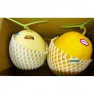 【じゅんさいの館】メロン(品種、サイズおまかせ)2玉