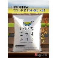 A-1232011【2020年11月発送分】山形県河北町産はえぬき10kg(5kg×2袋)【米comeかほく協同組合】